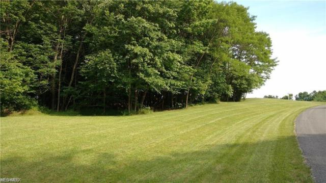Lot 1 11254 Rolling Meadows Drive, Garrettsville, OH 44231 (MLS #4102531) :: RE/MAX Valley Real Estate
