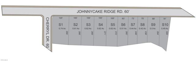 11026 Johnnycake Ridge Parcel 2, Painesville Township, OH 44077 (MLS #4103069) :: RE/MAX Edge Realty