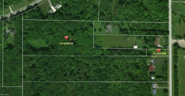 Kile Road, Hambden, OH 44024 (MLS #4103997) :: The Holden Agency