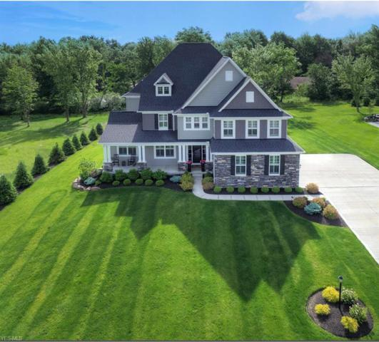 10203 Woodlands Drive, Brecksville, OH 44141 (MLS #4104485) :: RE/MAX Edge Realty