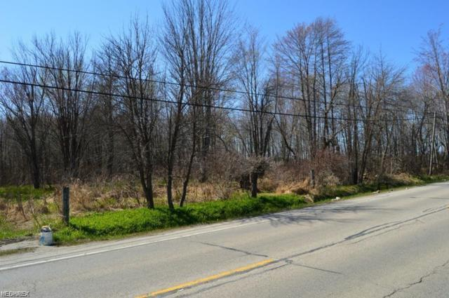 State Route 46, Jefferson, OH 44047 (MLS #4104842) :: RE/MAX Trends Realty