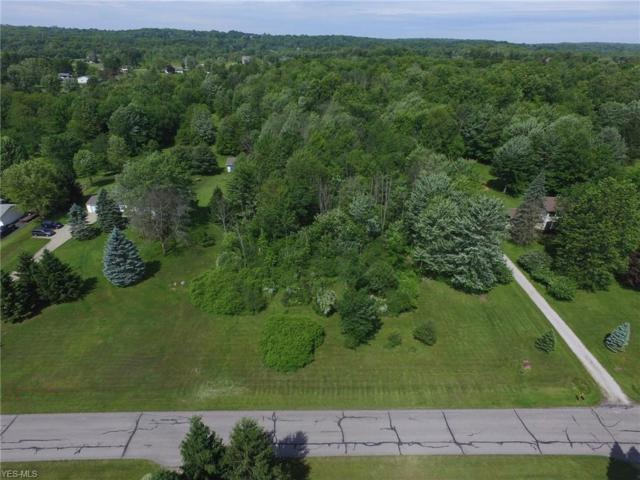 12880 Greenbrier Drive, Chardon, OH 44024 (MLS #4104949) :: RE/MAX Trends Realty