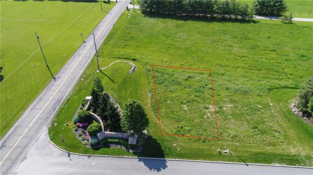 31 Shores Drive, Poland, OH 44514 (MLS #4104955) :: RE/MAX Valley Real Estate