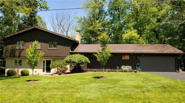 10009 Crestridge Drive, Chardon, OH 44024 (MLS #4105014) :: RE/MAX Valley Real Estate