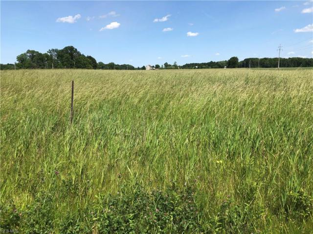 Gore Orphanage Road, New London, OH 44851 (MLS #4105164) :: RE/MAX Valley Real Estate