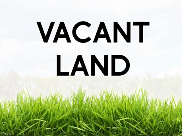 VL Ridge Avenue, North Kingsville, OH 44068 (MLS #4105679) :: RE/MAX Valley Real Estate
