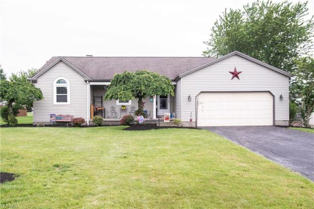 6823 Pineridge Court, Austintown, OH 44515 (MLS #4105867) :: RE/MAX Valley Real Estate