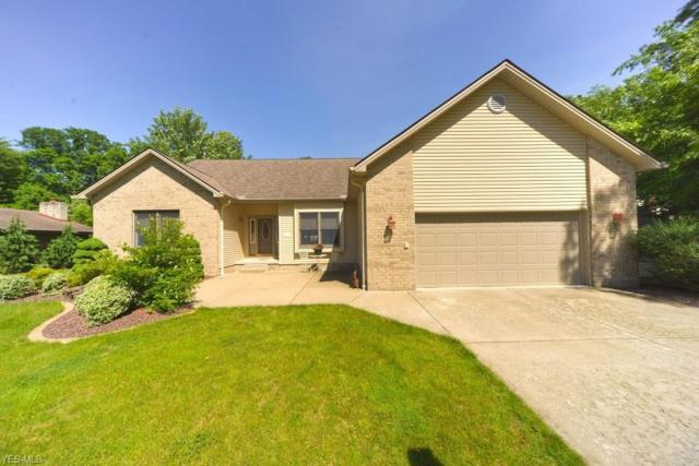 7451 Christopher Drive, Poland, OH 44514 (MLS #4105891) :: RE/MAX Valley Real Estate