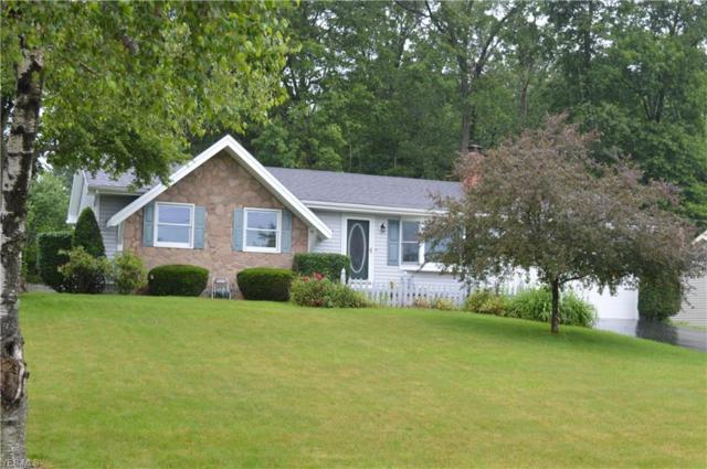 3392 Johnson Farm Drive, Canfield, OH 44406 (MLS #4105951) :: RE/MAX Edge Realty