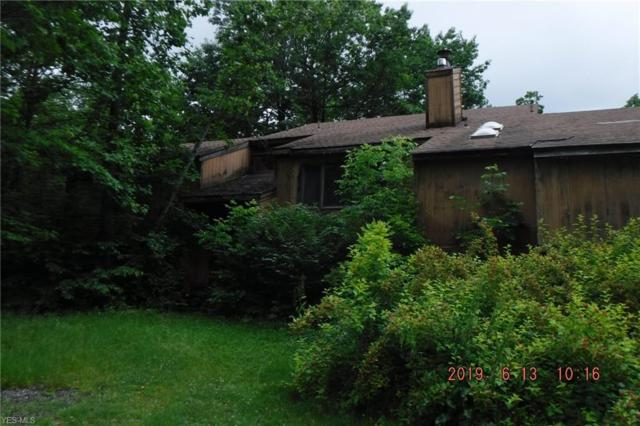17176 Wood Acre Trail, Chagrin Falls, OH 44023 (MLS #4106026) :: RE/MAX Valley Real Estate