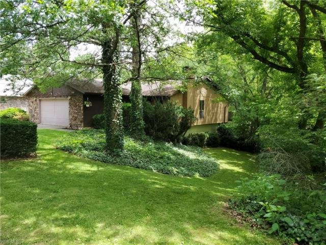 1236 Point Of View Drive, Wooster, OH 44691 (MLS #4106103) :: RE/MAX Valley Real Estate