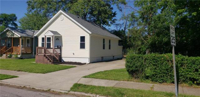 585 Fairlawn Avenue, Painesville, OH 44077 (MLS #4106408) :: RE/MAX Edge Realty