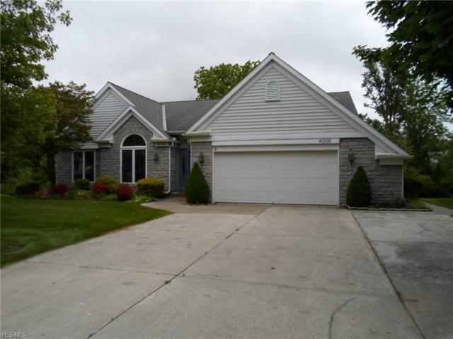 4200 Woodridge Drive, Sandusky, OH 44870 (MLS #4106410) :: RE/MAX Valley Real Estate