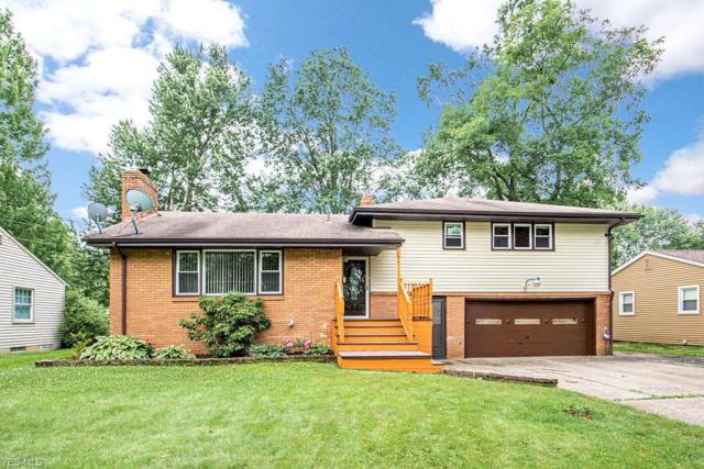 4239 Carlisle Avenue, Austintown, OH 44511 (MLS #4107223) :: RE/MAX Valley Real Estate