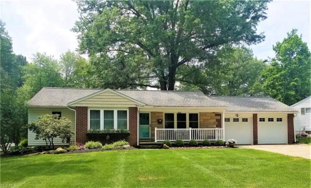 119 Hillcrest Drive, Rittman, OH 44270 (MLS #4107808) :: RE/MAX Edge Realty