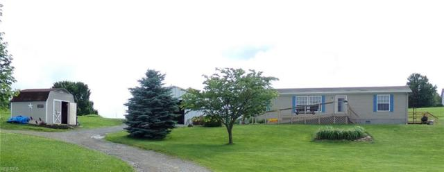 47988 Pancake-Clarkson Road, Rogers, OH 44455 (MLS #4107864) :: RE/MAX Valley Real Estate
