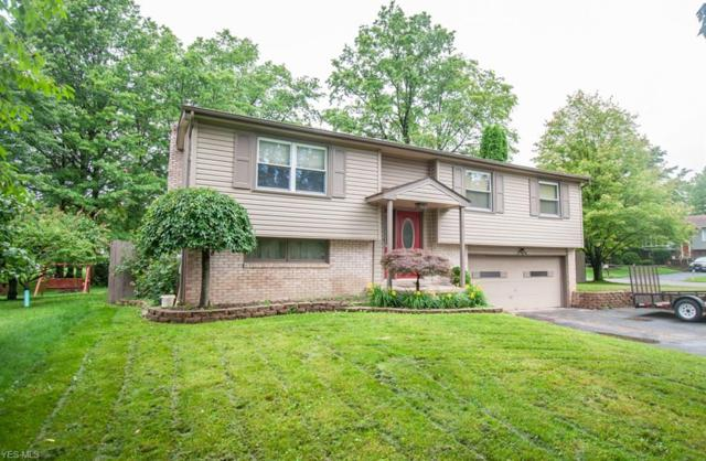 1738 Dumont Drive, Mineral Ridge, OH 44440 (MLS #4108206) :: RE/MAX Valley Real Estate