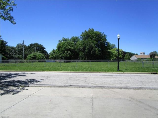 2356 E 36th Street, Cleveland, OH 44115 (MLS #4108224) :: RE/MAX Edge Realty