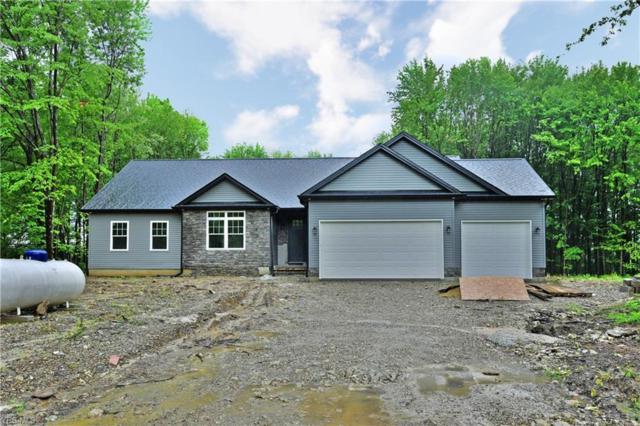 5050 Smith Stewart, Vienna, OH 44473 (MLS #4108393) :: RE/MAX Valley Real Estate