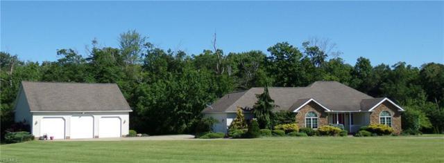 28118 Misty Morning Lane, Beloit, OH 44609 (MLS #4108709) :: RE/MAX Valley Real Estate
