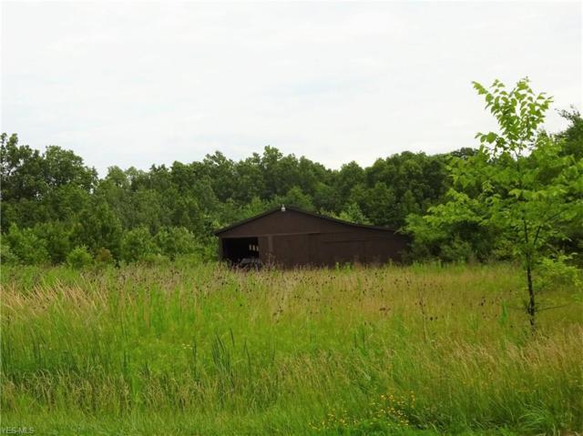 State Route 14, Deerfield, OH 44411 (MLS #4109327) :: The Crockett Team, Howard Hanna