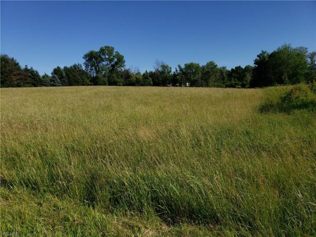 Ford Road, Painesville Township, OH 44057 (MLS #4109528) :: The Crockett Team, Howard Hanna