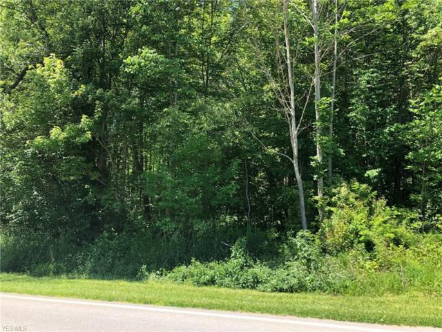 Chapel Road, Ashtabula, OH 44004 (MLS #4109740) :: RE/MAX Trends Realty