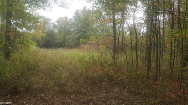 Cable Line, Diamond, OH 44412 (MLS #4109927) :: Keller Williams Chervenic Realty