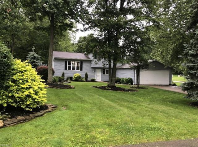 11146 Heritage Drive, Twinsburg, OH 44087 (MLS #4110652) :: RE/MAX Pathway