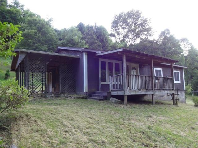 932 Lee's Run, Palestine, WV 26160 (MLS #4110749) :: The Crockett Team, Howard Hanna