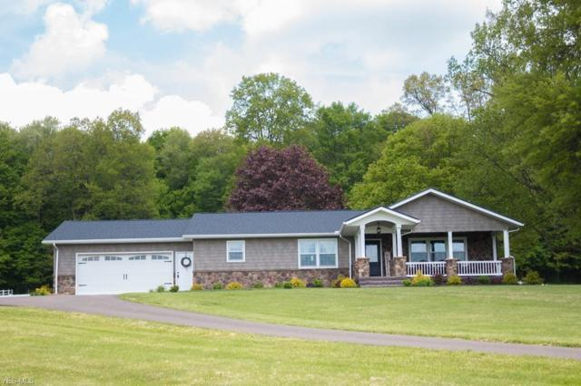 24999 Danville Amity Road, Danville, OH 43014 (MLS #4111567) :: RE/MAX Trends Realty