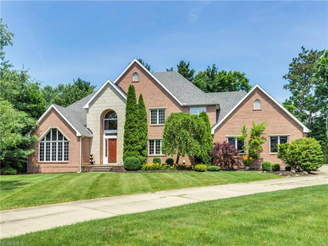 856 Cricket Circle, Akron, OH 44333 (MLS #4112626) :: RE/MAX Above Expectations