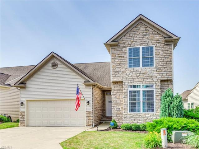 801 Lakeview Court #3, Kent, OH 44240 (MLS #4112926) :: RE/MAX Pathway