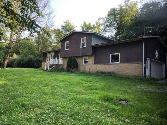 44031 Y And O Road, Wellsville, OH 43968 (MLS #4113284) :: RE/MAX Edge Realty