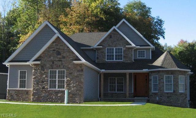 7439 Harps Mill Drive, Wadsworth, OH 44281 (MLS #4113726) :: The Crockett Team, Howard Hanna