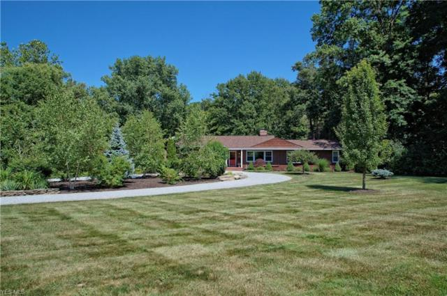 6835 Morley Road, Concord, OH 44077 (MLS #4113788) :: RE/MAX Valley Real Estate