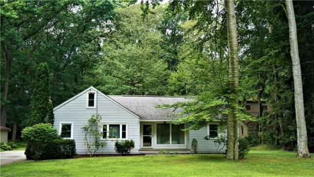 224 N Elm Avenue, Tallmadge, OH 44278 (MLS #4113970) :: RE/MAX Trends Realty