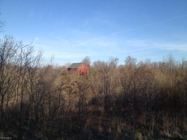 8552 Cupyk Road, Cumberland, OH 43732 (MLS #4113987) :: RE/MAX Valley Real Estate