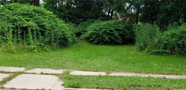 S Case Avenue, Akron, OH 44305 (MLS #4114738) :: RE/MAX Valley Real Estate