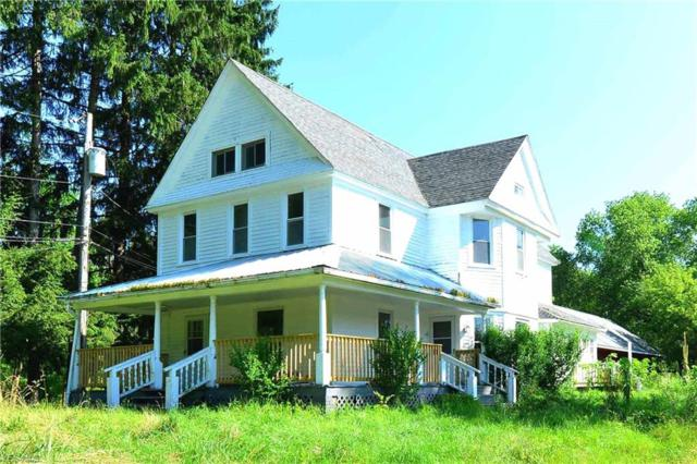 7228 State Route 14, Ravenna, OH 44266 (MLS #4115249) :: Tammy Grogan and Associates at Cutler Real Estate