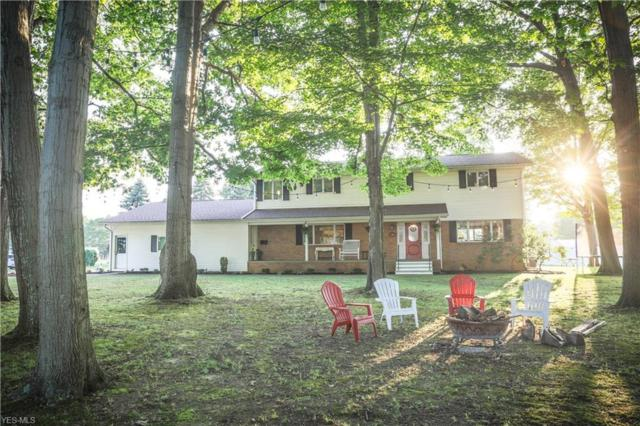 749 Mill Street, Conneaut, OH 44030 (MLS #4115337) :: RE/MAX Valley Real Estate