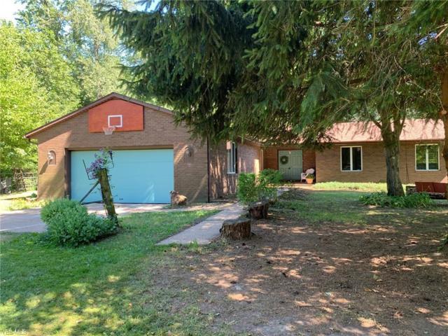 14500 Darrow Road, Vermilion, OH 44089 (MLS #4115396) :: RE/MAX Valley Real Estate