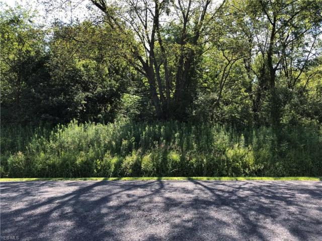 Kirk Road, Columbiana, OH 44408 (MLS #4115497) :: RE/MAX Valley Real Estate