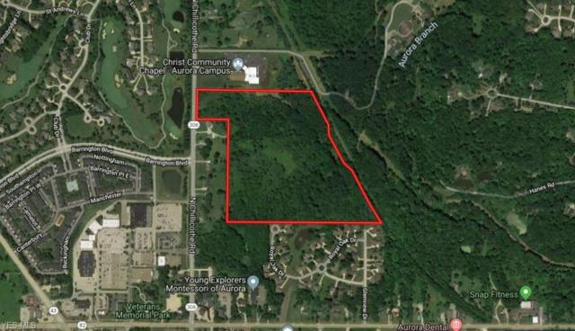 N Chillicothe, Aurora, OH 44202 (MLS #4115662) :: RE/MAX Pathway