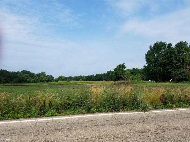 0000 White Pond Drive, Akron, OH 44313 (MLS #4115730) :: RE/MAX Edge Realty