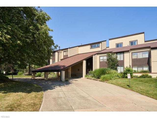 186 Court Drive #206, Fairlawn, OH 44333 (MLS #4115787) :: RE/MAX Edge Realty