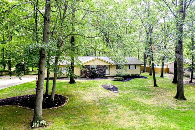305 Rutland Avenue, Youngstown, OH 44515 (MLS #4116060) :: RE/MAX Trends Realty