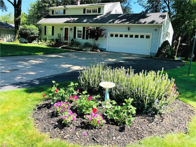 377 Beaumont Drive, Fairlawn, OH 44333 (MLS #4116256) :: RE/MAX Trends Realty