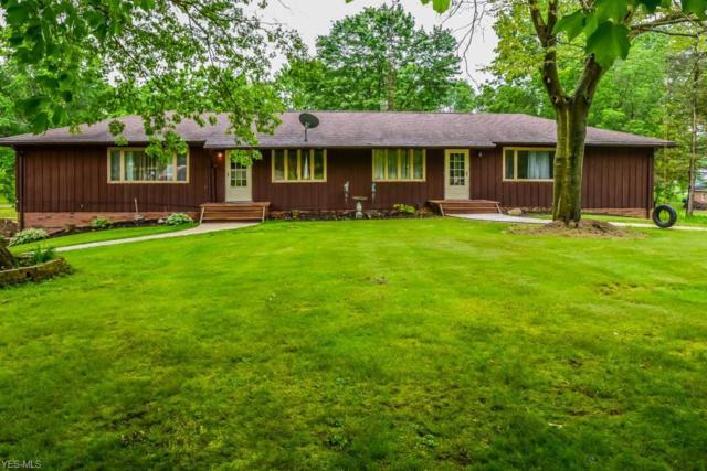 8736 Lynn Park Street NE, Alliance, OH 44601 (MLS #4116278) :: RE/MAX Trends Realty