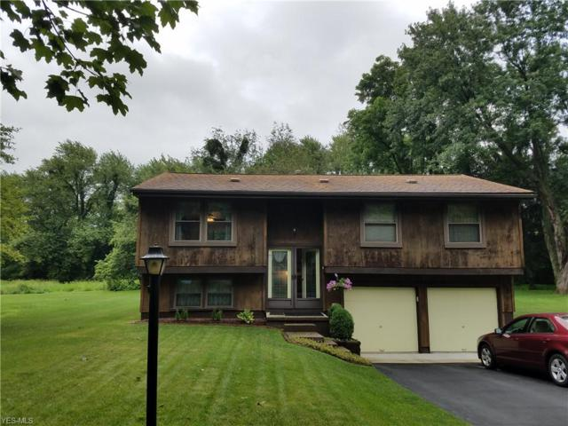 989 Erin Drive, Kent, OH 44240 (MLS #4116828) :: RE/MAX Trends Realty